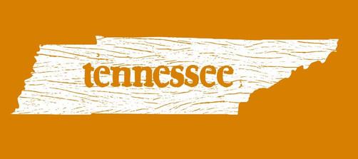 Tennessee wooden plank shirt design
