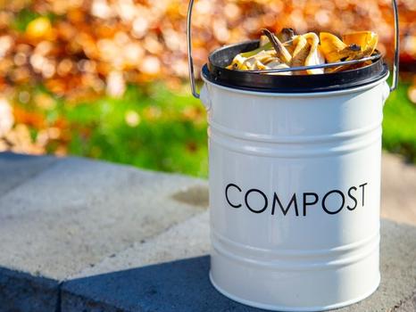 4 motivos para fazer compostagem em casa