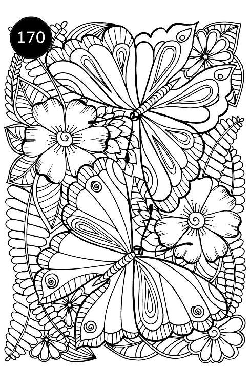 גיליון צביעה ענק-אביב ופרפרים