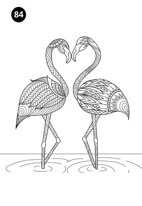 גיליון צביעה ענק - זוג פלמינגו