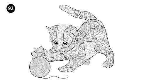 גיליון צביעה ענק - חתלתול