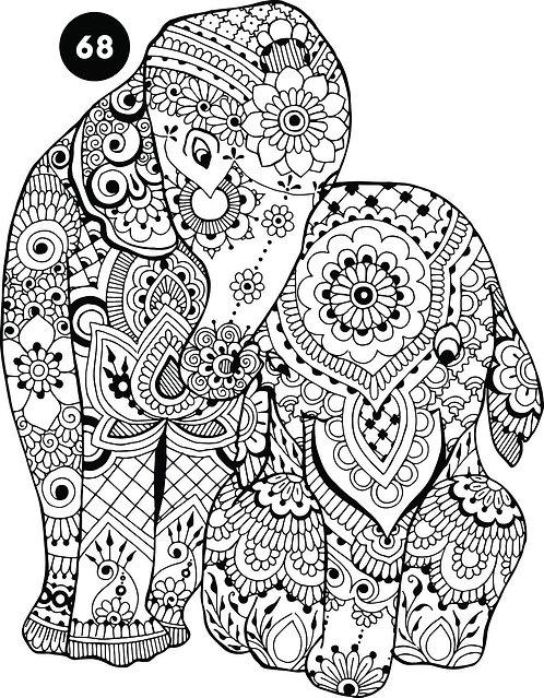 גיליון צביעה ענק - פילה פרחונית במיוחד