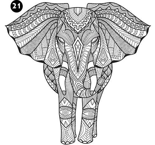 גיליון צביעה ענק - פיל ענק