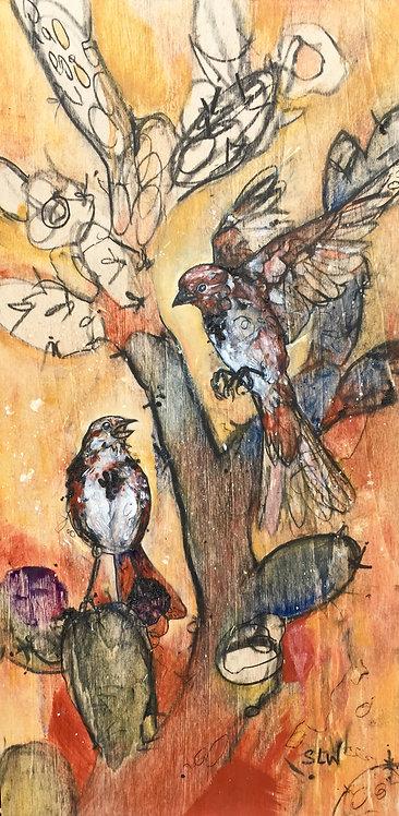 Desert Sparrow Song