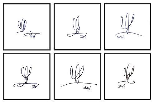 "Cactus Scribbles, set of 6 4""x4"" gloss prints"