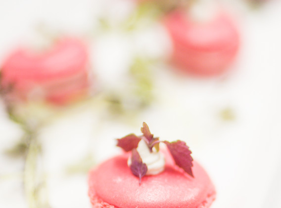 Bridget Bray - (NK) Meaghan Rachman Dessert Macarons.jpg