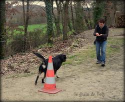 Le grain de Foly, éducation canine
