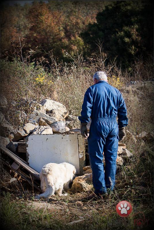 recherche en décombres