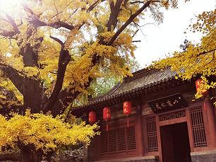 chine, taiyuan, shanxi