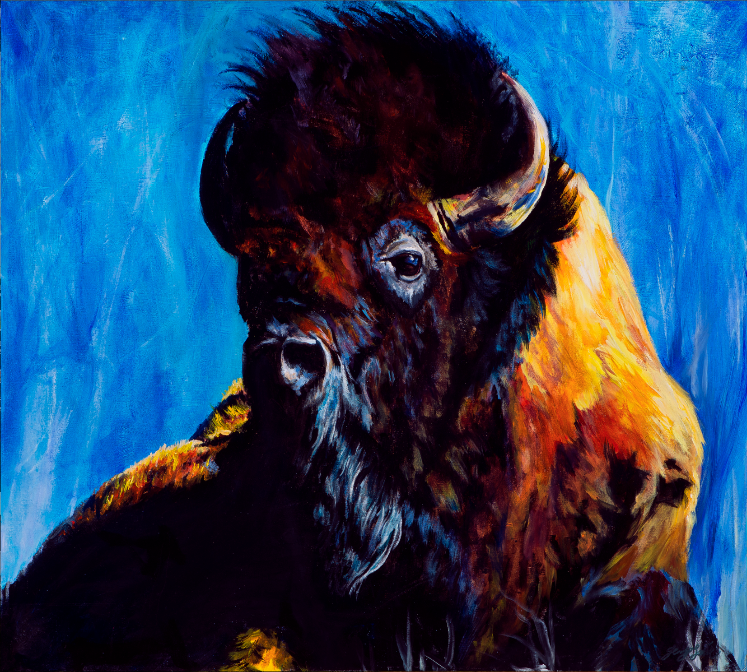 Bluffin' Buffalo