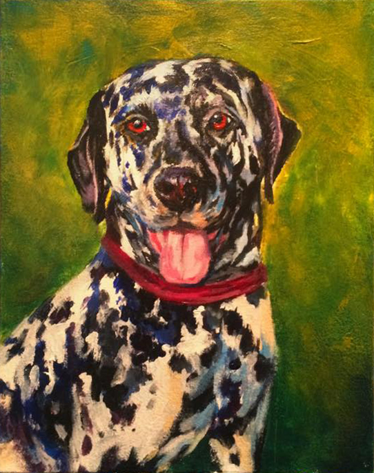 Dalmatian pet portrait