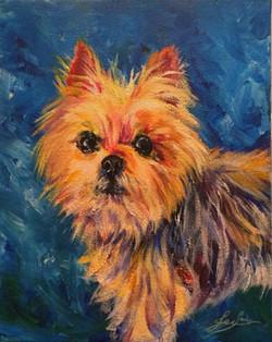 """""""Grizz"""" pet portrait"""