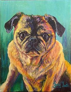 """""""Mollie"""" pet portrait"""