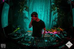 Tektu: Into the Jungle