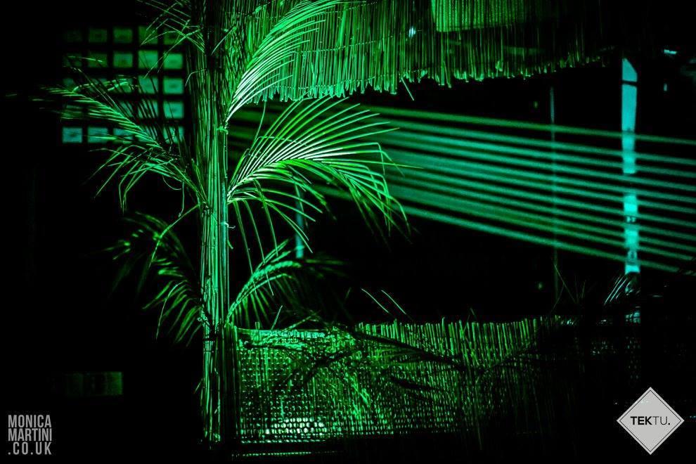 Tektu Presents: Into the Jungle