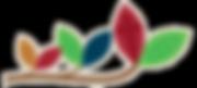 Avondale Christian Kindergarten - Leaves on a branch logo