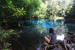 Emerald Pool 4