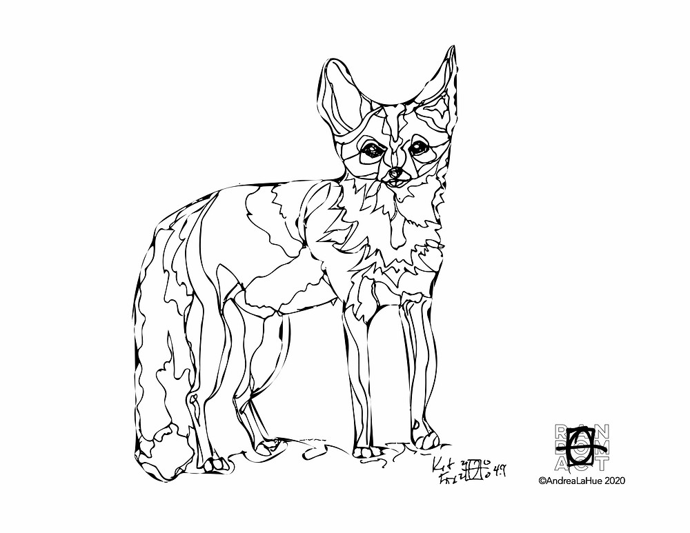 Kit Fox coloring page by Andrea LaHue