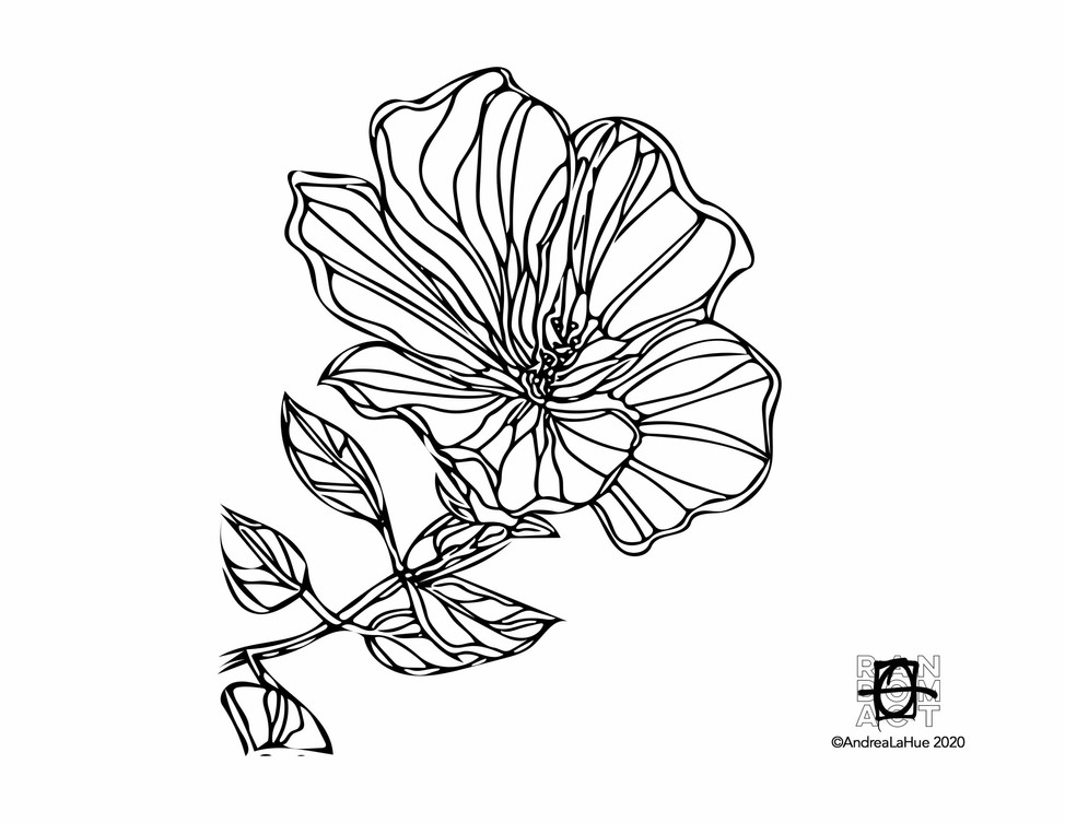 Curious Coloring Pages, Hibiscus, Horned Beetle, Dragon Fun
