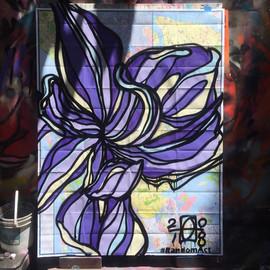 new york iris