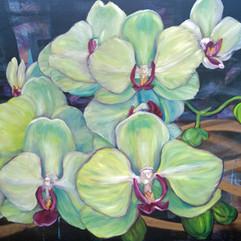 radical trust greenish orchids alahue.jp