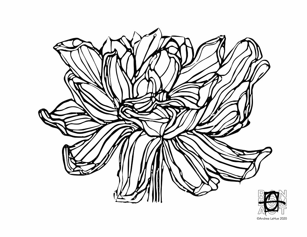 Lotus coloring page by Andrea LaHue