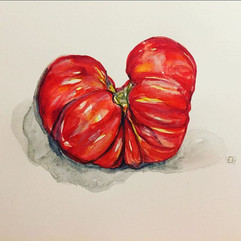 Fran's Tomatoes 🍅 #tomato #watercolor