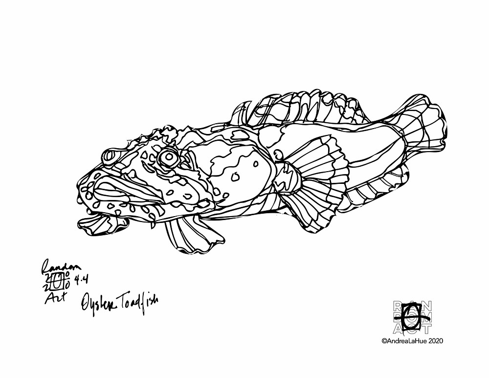 toadfish coloring page by Andrea LaHue
