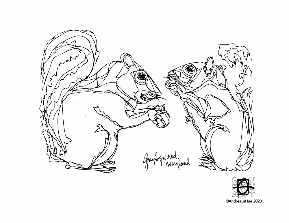 Squirrel Coloring Page by Andrea LaHue