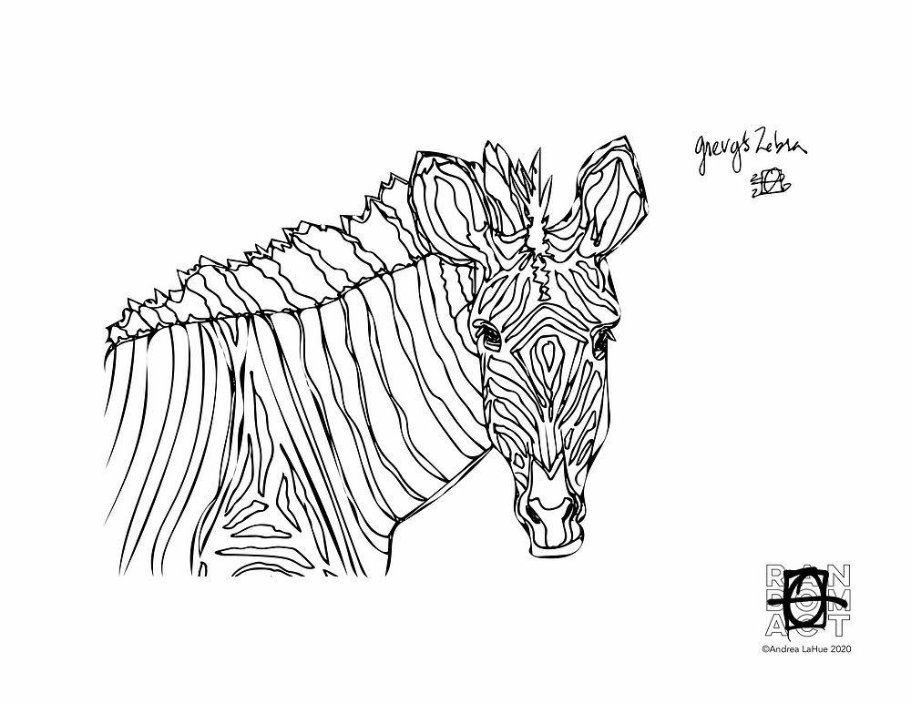 grevy's zebra coloring page by Andrea LaHue