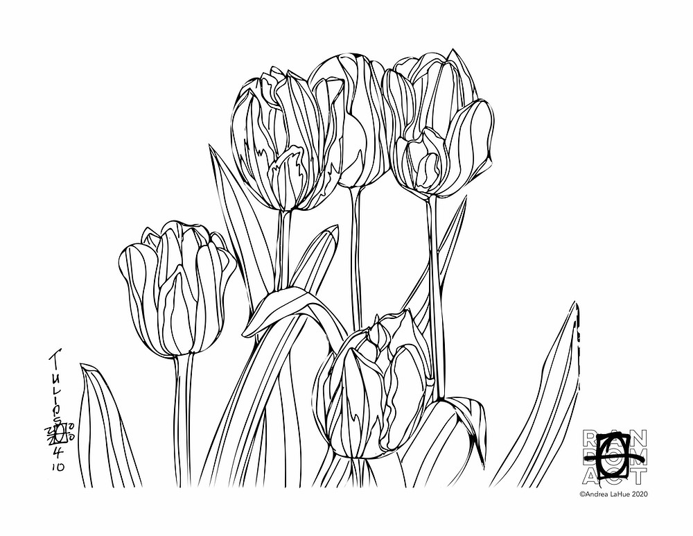 Tulip Coloring Pages by Andrea LaHue