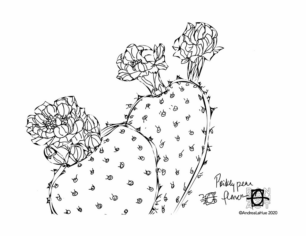 prickly pear coloring page by Andrea LaHue