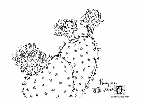 Curious Coloring Pages, Prickly Pear, Koala Bear, Dragon Fun