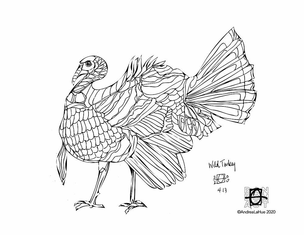 Wild Turkey coloring page by Andrea LaHue