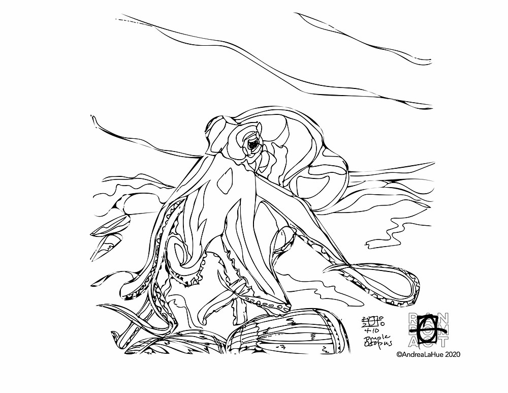 Octopus coloring page by Andrea LaHue