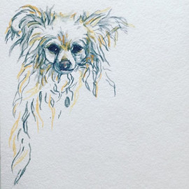 Lily, My Love 🌻_Watercolor _We_Rescue _