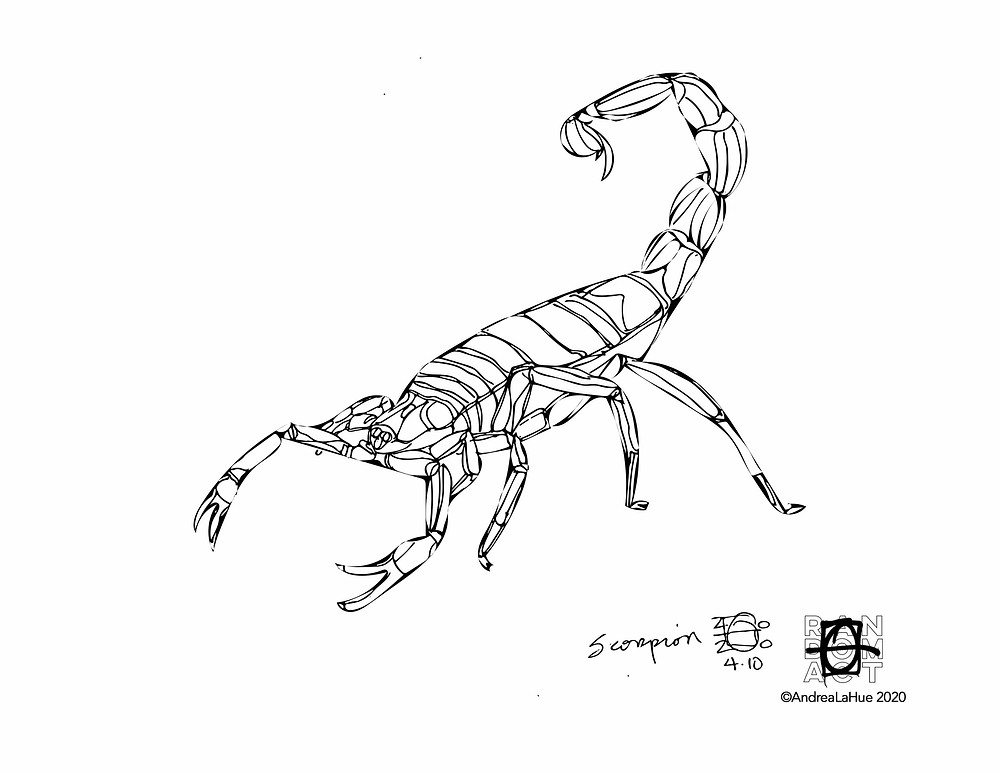 Scorpion Coloring Page by Andrea LaHue
