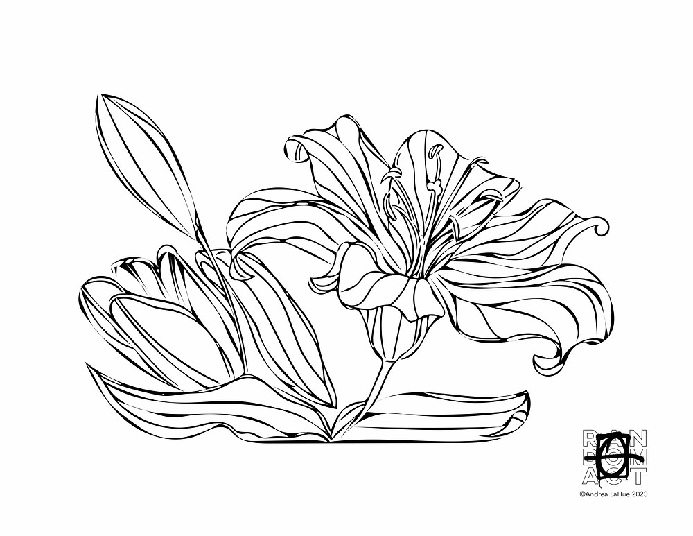 Lily Coloring Page by Andrea LaHue