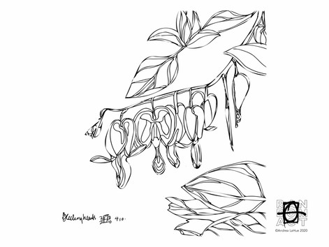 Curious Coloring Pages, Bleeding Heart, Badger, Dragon Fun