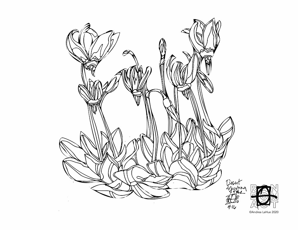 Shooting Star Coloring Page by Andrea LaHue