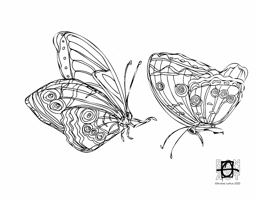 Blue Morpho Coloring Page by Andrea LaHue