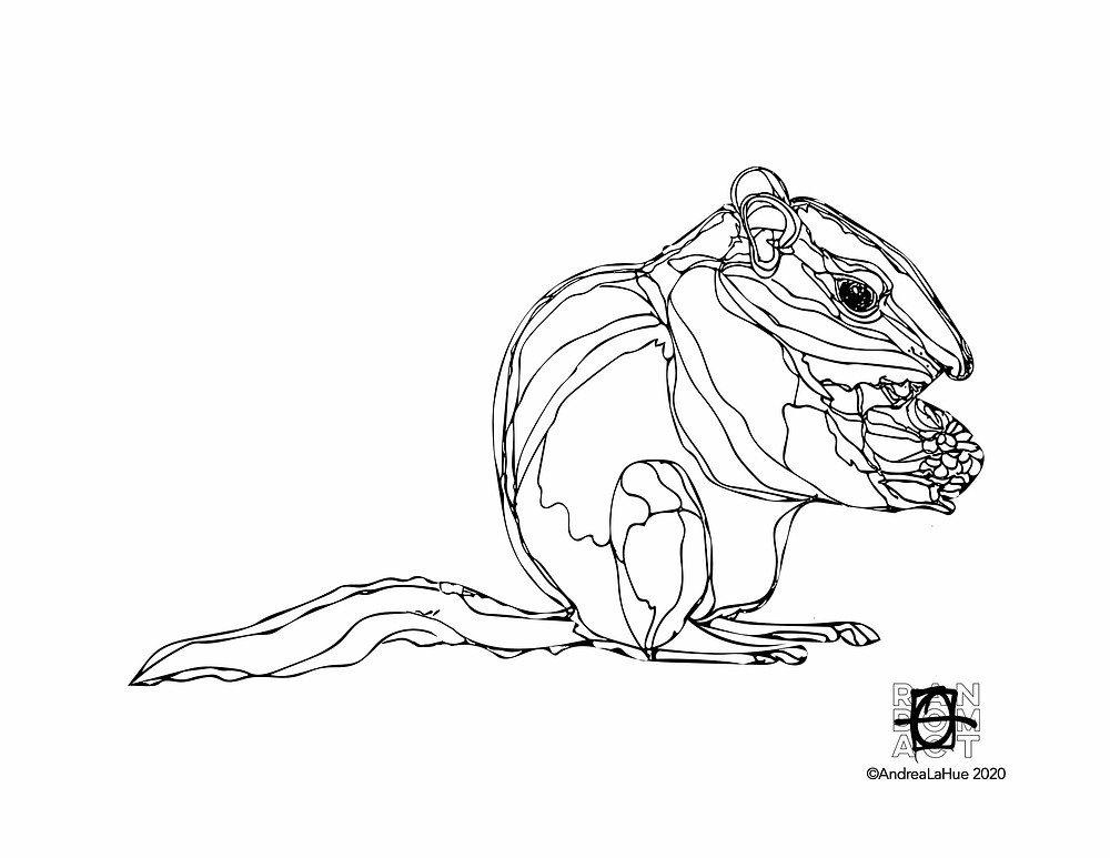 Chipmunk Coloring Page by Andrea LaHue