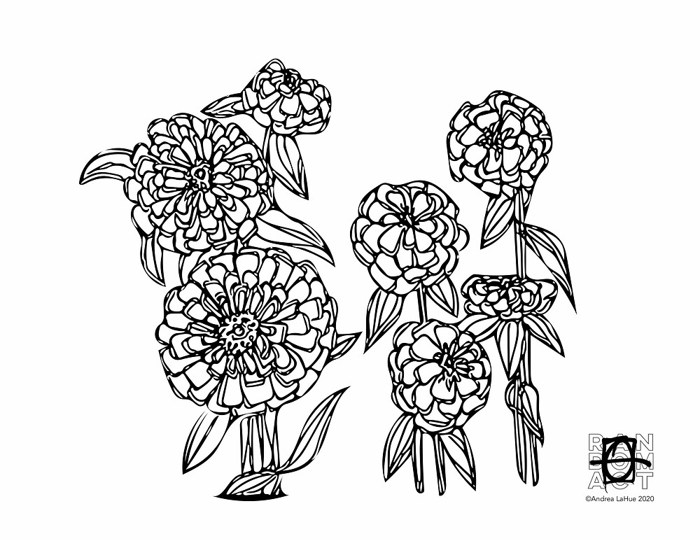 Zinnia Coloring Page by Andrea LaHue