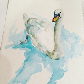 I love swans... remember the ugly duckli