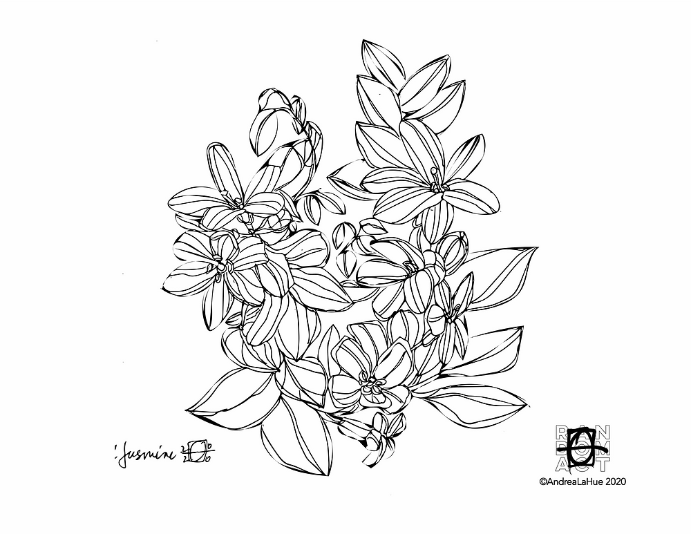 Jasmine Coloring Page by Andrea LaHue