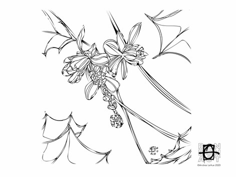 Curious Coloring Pages, Grape Holly, Seahorses, Dragon Fun