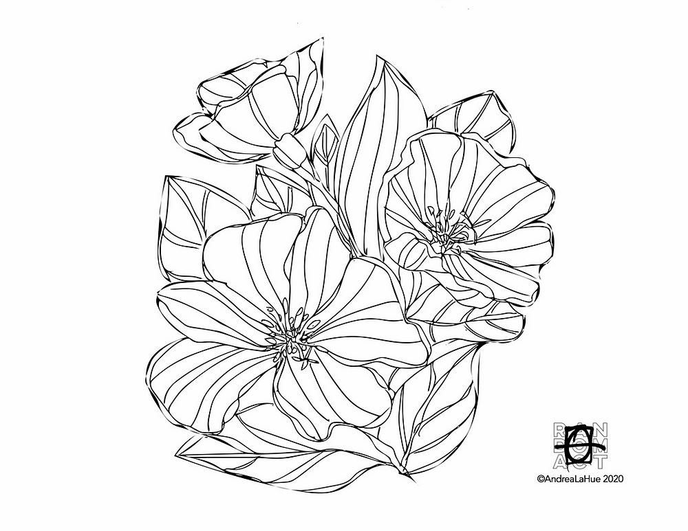 Dunes Evening Primrose coloring page by Andrea LaHue