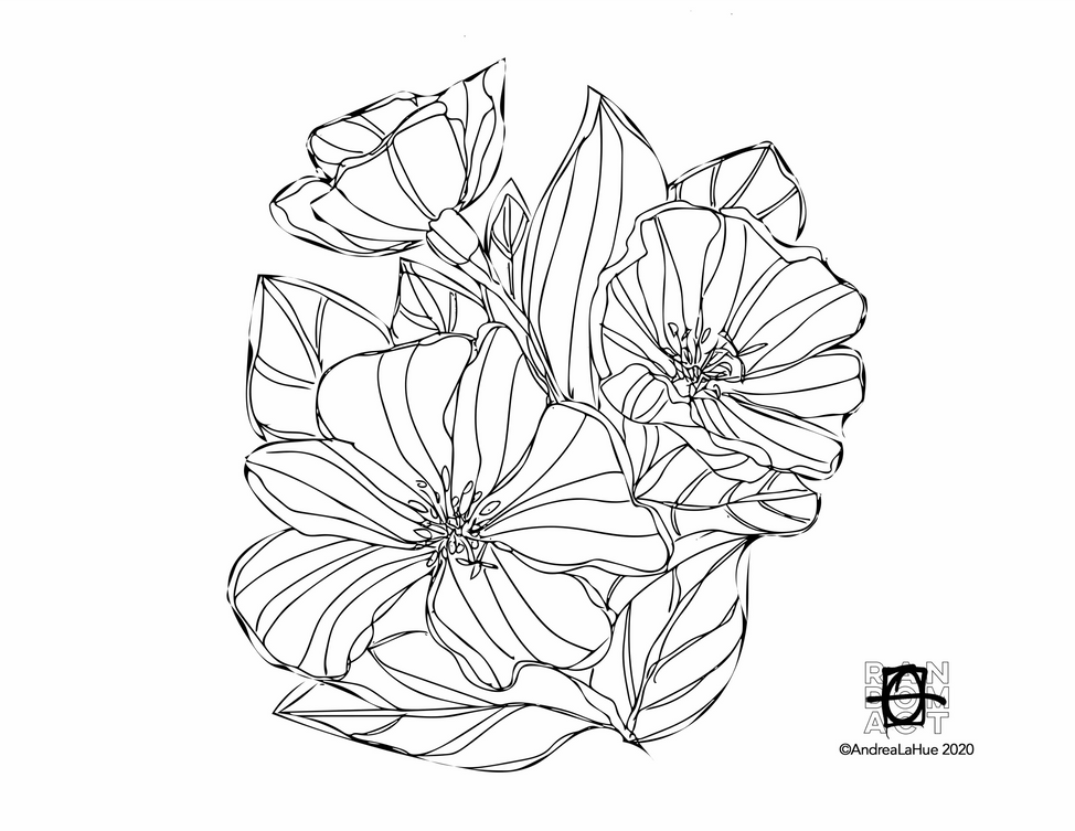 Curious Coloring Pages, Dune Evening Primrose, Blue Morpho, Dragon