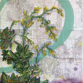 succulent california map