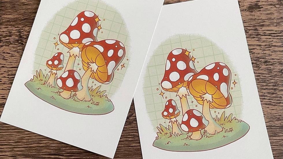 4x6 Postcard - Mushroom